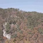 북구 대천천 애기소 계곡 17