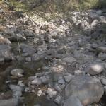 북구 대천천 애기소 계곡 6